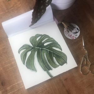 Monstera Aquarell