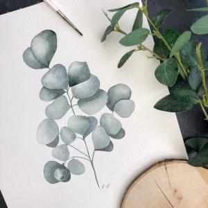 Aquarellbild Eukalyptus